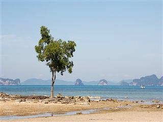 Andaman packages in march
