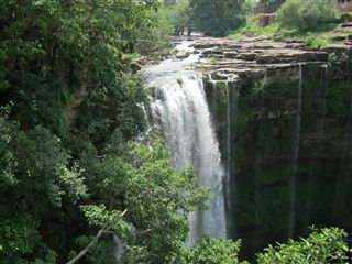 Jharkhand to andaman travel deals